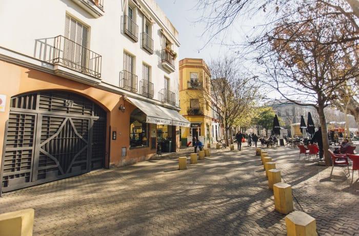 Apartment in Alameda, Alameda de Hercules - 0