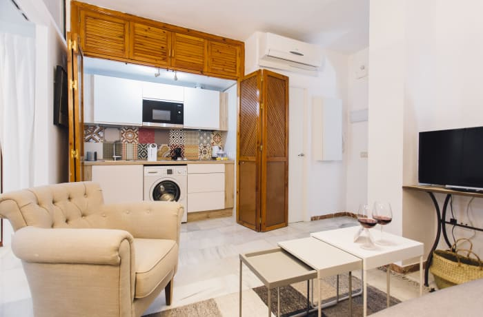 Apartment in Alameda, Alameda de Hercules - 3