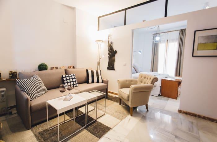 Apartment in Alameda, Alameda de Hercules - 1