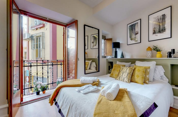 Apartment in Conde de Torrejon II, Alameda de Hercules - 13