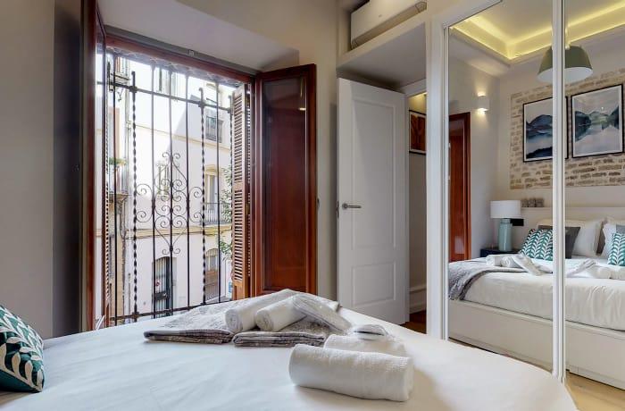 Apartment in Conde de Torrejon II, Alameda de Hercules - 8