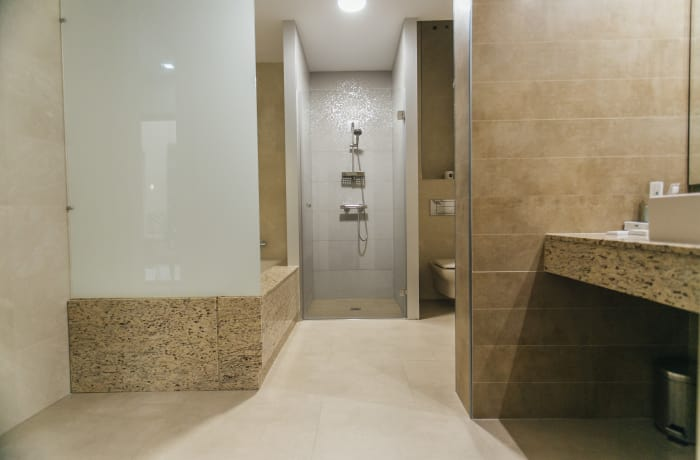 Apartment in Conde de Torrejon, Alameda de Hercules - 20