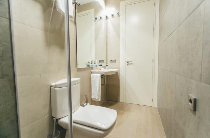 Apartment in Conde de Torrejon, Alameda de Hercules - 26