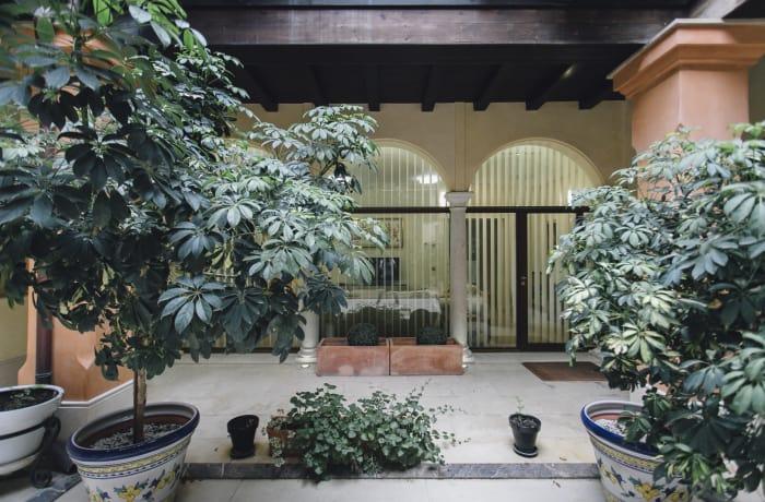 Apartment in Conde de Torrejon, Alameda de Hercules - 28