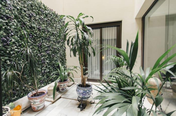 Apartment in Conde de Torrejon, Alameda de Hercules - 27