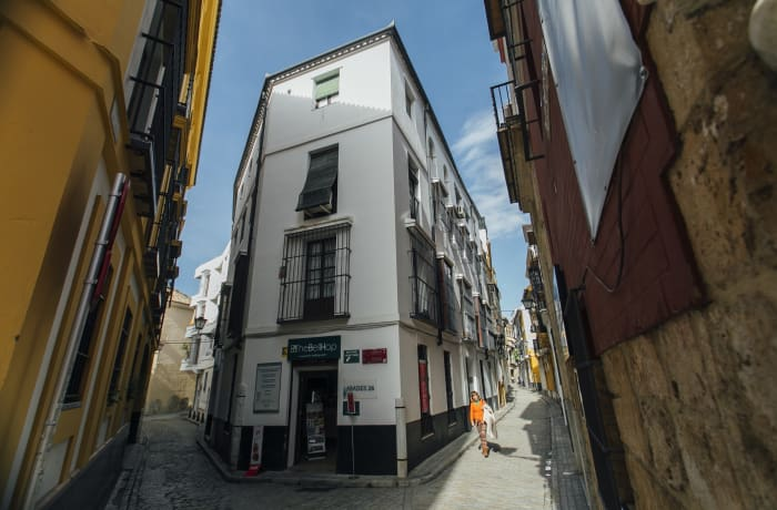 Apartment in Abades, La Giralda - 19