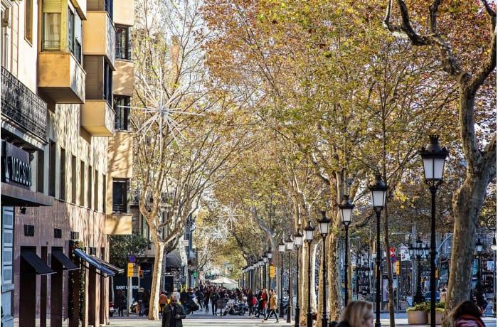 Apartment in La Pedrera - Paseo de Gracia, Eixample - 22