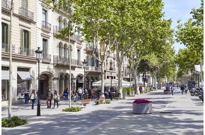 Apartment in Paseo de Gracia - City Centre, Plaza Catalunya- City Center - 0