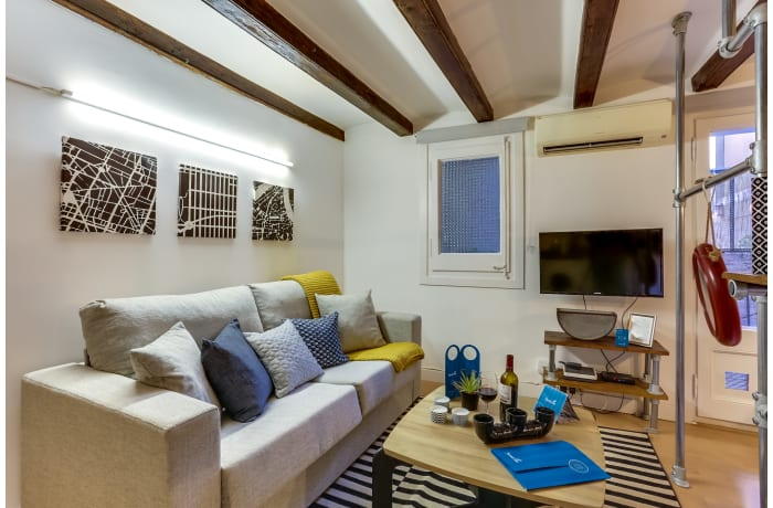 Apartment in Miro Park, Plaza España - 3