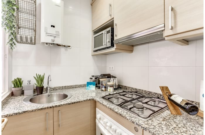 Apartment in Rosemarine II, Sagrada Familia - 5
