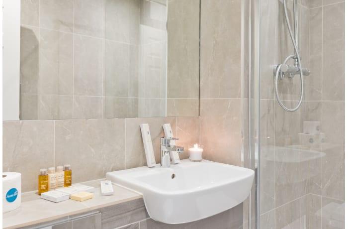 Apartment in Claredon Hall, Dame Street/Grafton Area - 16