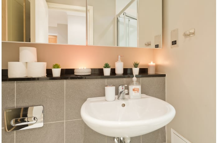 Apartment in Central Riverside I, Grand Canal Dock - 21