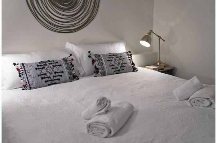 Apartment in Pitti Gardens, San Niccolo - 4