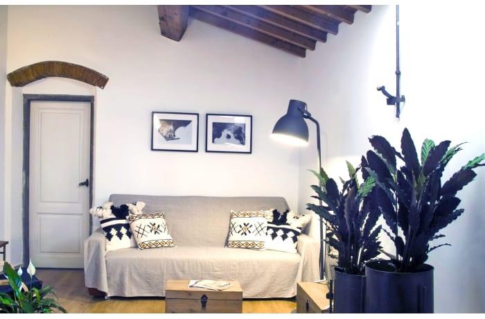 Apartment in Via Maggio, San Niccolo - 8