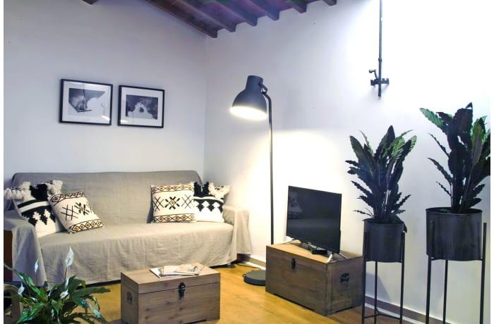 Apartment in Via Maggio, San Niccolo - 7