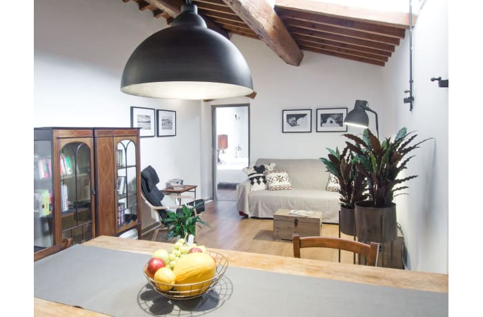 Apartment in Via Maggio, San Niccolo - 12