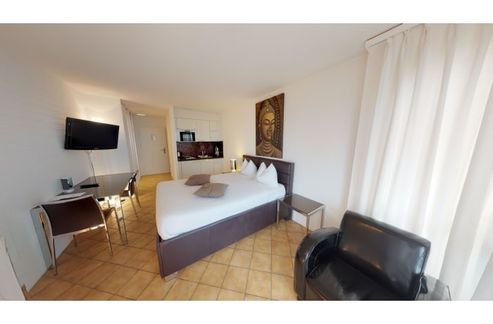 Apartment in Bright Chemin Fontaine II, Ouchy - 5