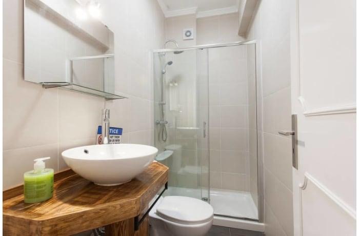Apartment in Alfama Terrace, Alfama - 10