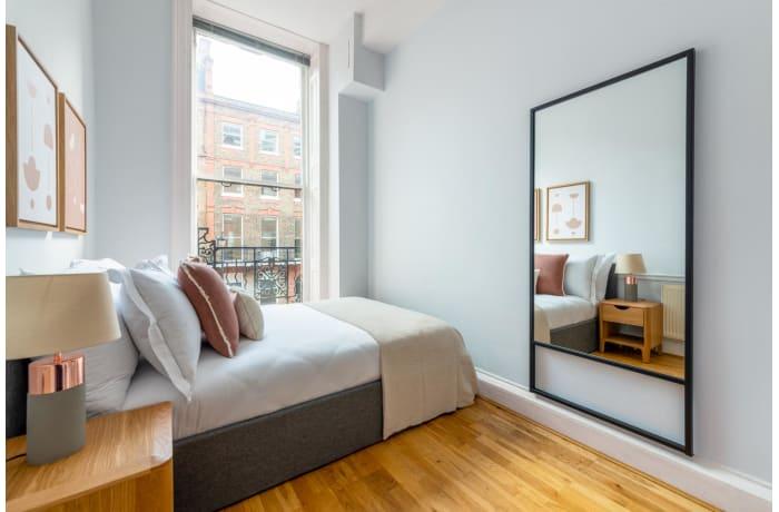 Apartment in Nottingham Place, Marylebone - 5