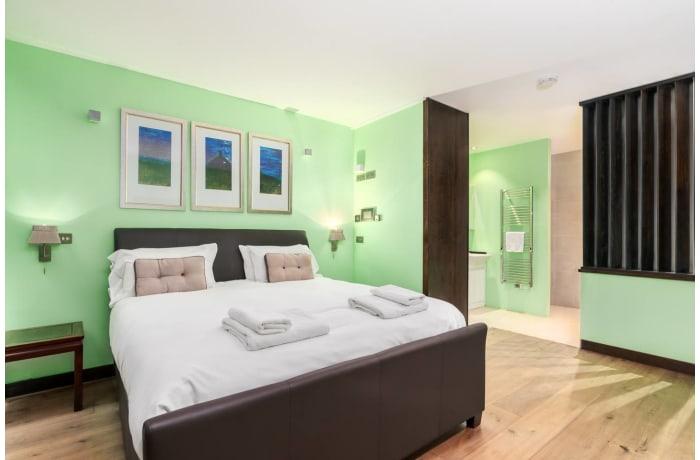 Apartment in Paddington Mews, Paddington - 5