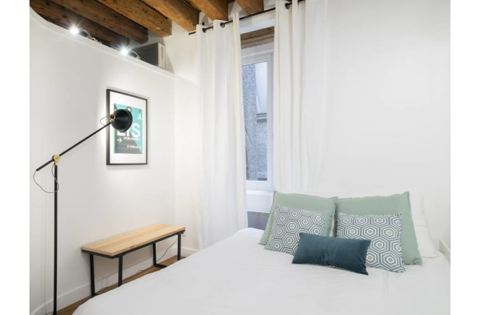 Apartment in Palais Grillet, Cordeliers - Jacobins - 9