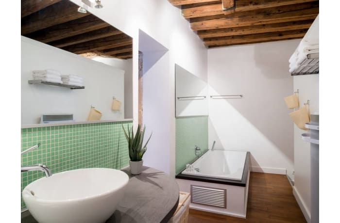 Apartment in Palais Grillet, Cordeliers - Jacobins - 11