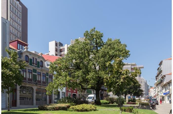 Apartment in Alferes Malheiro II, Santo Ildefonso - 24