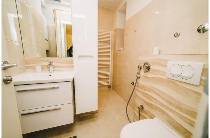 Apartment in Muse Catica SA1, Bascarsija - 13