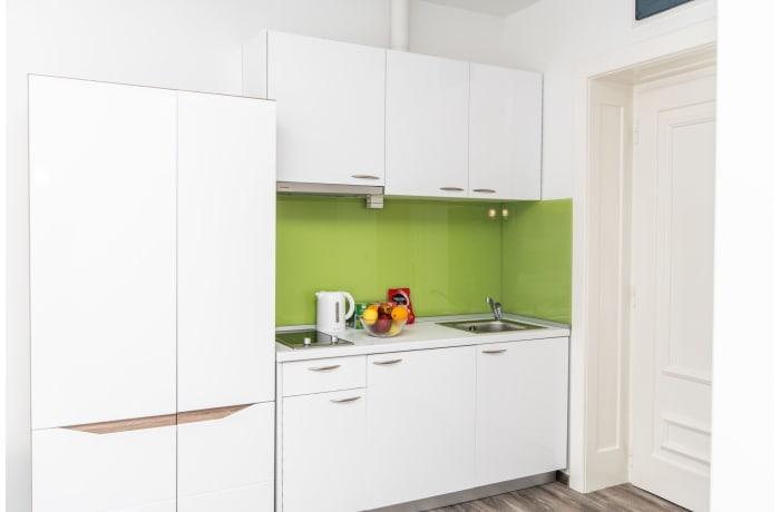 Apartment in Muvekita - Ferhadija SA15-1, Bascarsija - 6