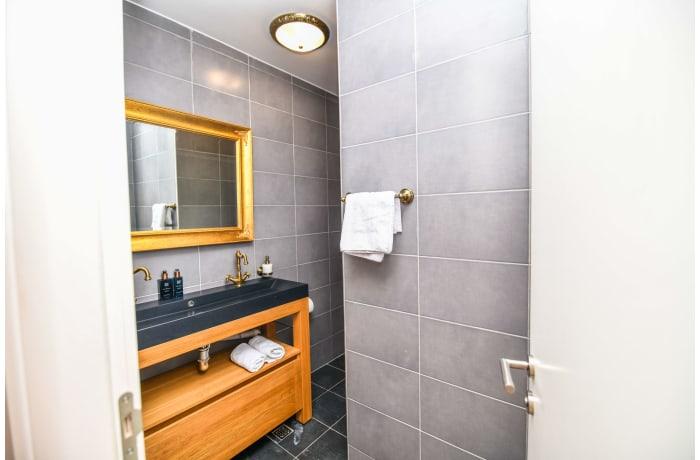Apartment in Drvenija SA20, Bistrik - 19