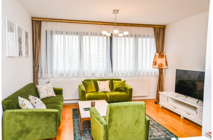 Apartment in Drvenija SA20, Bistrik - 0