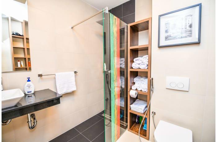 Apartment in Drvenija SA20, Bistrik - 23