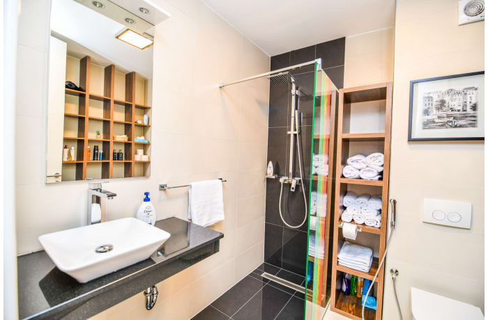Apartment in Drvenija SA20, Bistrik - 17