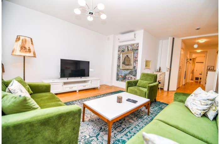 Apartment in Drvenija SA20, Bistrik - 1