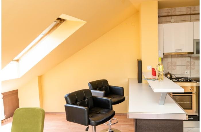 Apartment in Djoke Mazalica SA14, Marijin Dvor - 14