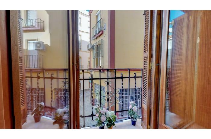 Apartment in Conde de Torrejon II, Alameda de Hercules - 0