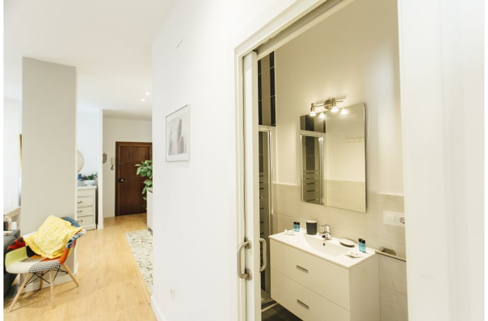 Apartment in Conde de Torrejon III, Alameda de Hercules - 26