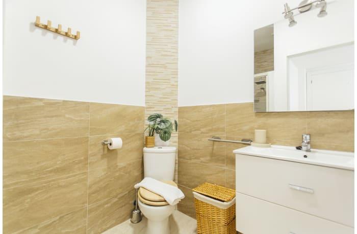 Apartment in Conde de Torrejon III, Alameda de Hercules - 22