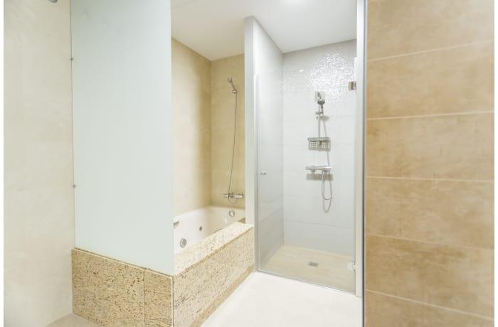 Apartment in Conde de Torrejon, Alameda de Hercules - 19