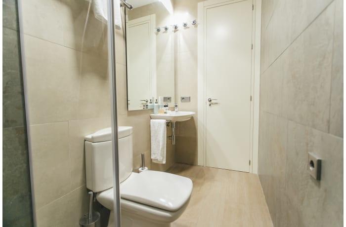 Apartment in Conde de Torrejon, Alameda de Hercules - 25
