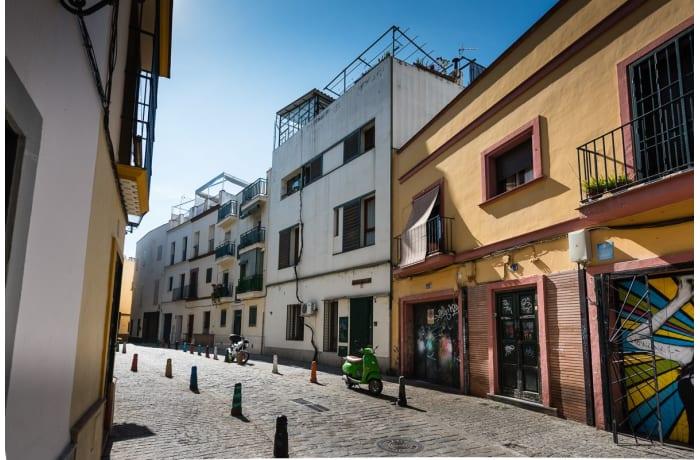 Apartment in Molino, Alameda de Hercules - 25