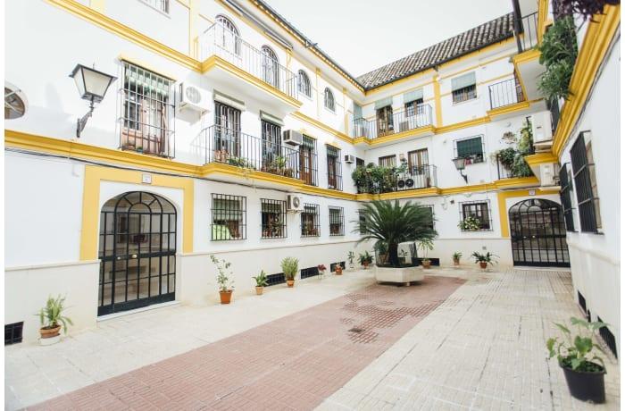 Apartment in San Basilio, Alameda de Hercules - 31