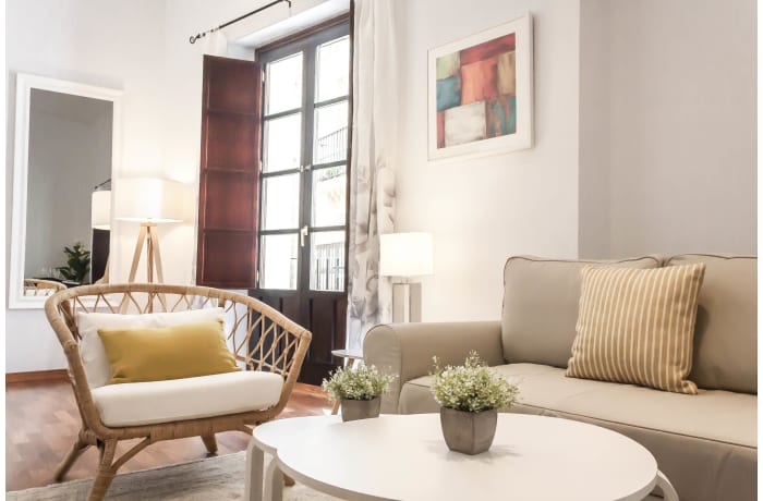 Apartment in Abades Giralda Deluxe, City center - 13
