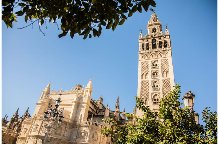 Apartment in Abades Giralda View, City center - 42
