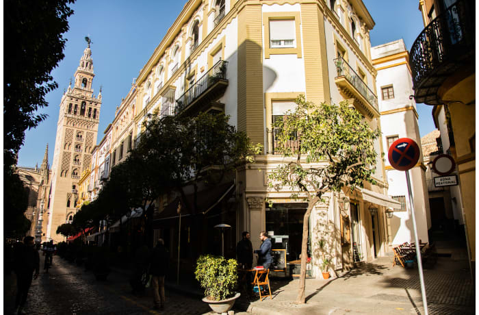 Apartment in Abades Giralda View, City center - 43