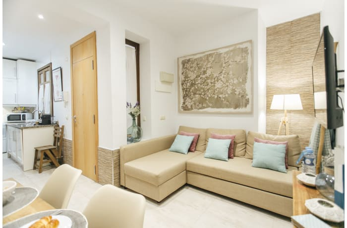 Apartment in Carlos Canal, City center - 4