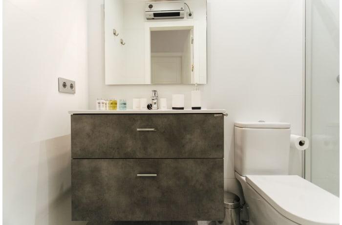 Apartment in Puente y Pellon, City center - 18