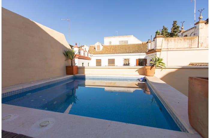 Apartment in Alcazar Pool Villa, San Bernardo - 15