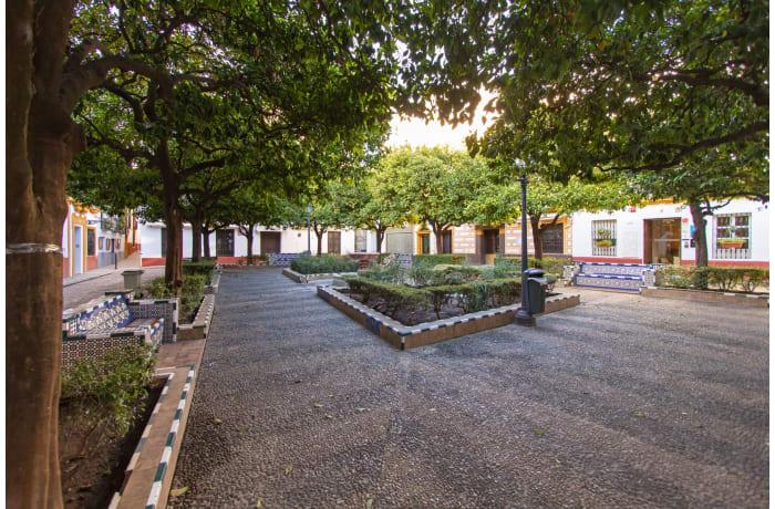 Apartment in Alcazar Pool Villa, San Bernardo - 53