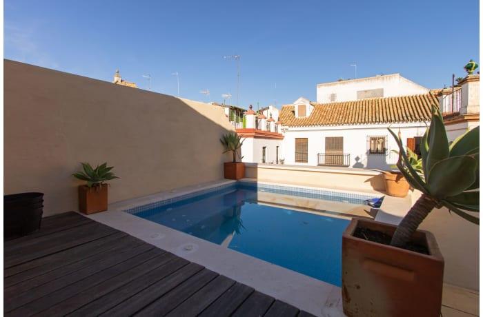 Apartment in Alcazar Pool Villa, San Bernardo - 7
